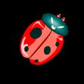 Perangkat Penerbangan Hebat pada Serangga
