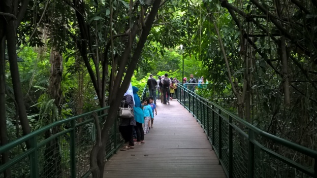 Forest Walks Babakan Siliwangi Bandung